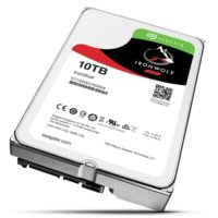 Seagate IronWolf 10TB 3,5''256MB ST10000VN0004